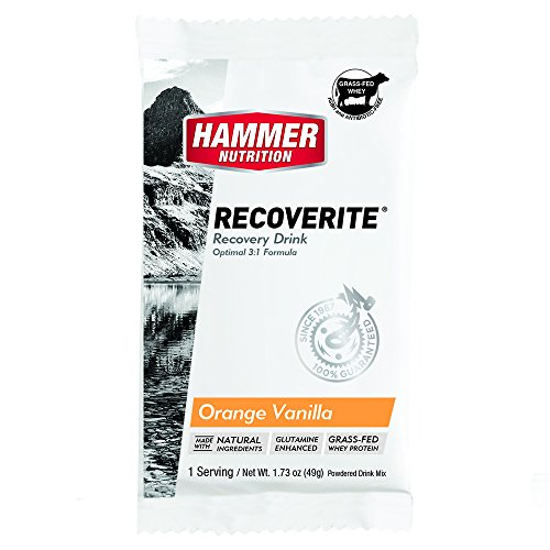 Hammer Nutrition Recoverite Flavor Orange-vanilla 6 Count, Single Packets