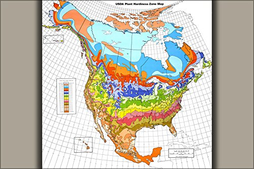 (24x36 Poster . Usda Plant Hardiness Zone Map Garden Seed Map 1990)