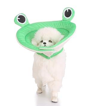 VIDOO Perro Collar Isabelino Herida Curación Recuperación Cono Collares Protección Protectora Gato del Animal Doméstico Collar-S: Amazon.es: Hogar
