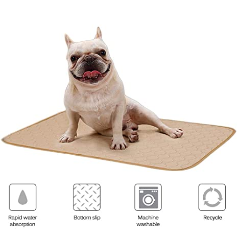 Pawaca Almohadillas lavables para orina de perro con parte inferior antideslizante, construcción de 4 capas