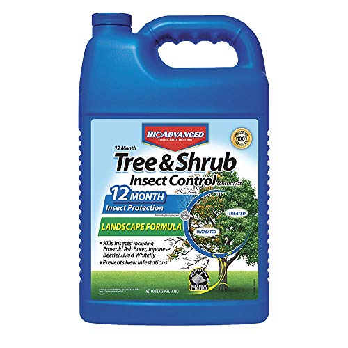 - Bayer Advanced 701525 12 Month Tree and Shrub Insect Control Landscape Formula Concentrate, 1-Gallon