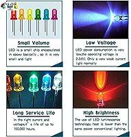 300 Pezzis LED Diodos Kit BlueXP 3mm 5mm LED Diodos Emisores Componente Electronico Usado Comoregalos Decoraciones Ligeras Indicador De Se/ñal DIY Project