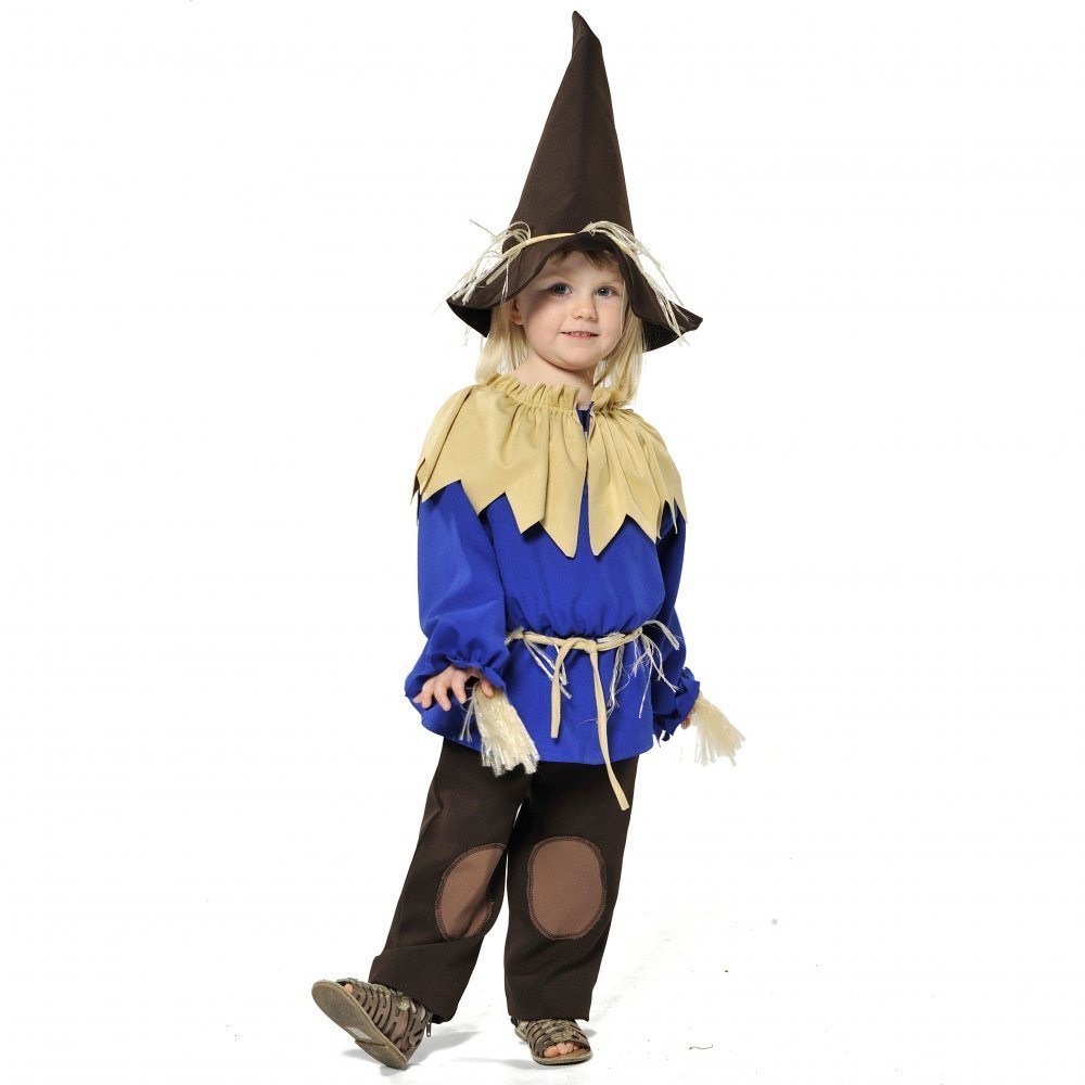 Rubie's Official The Wizard of Oz Scarecrow Fancy Dress - Small ...