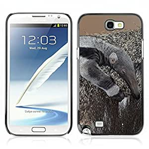 Super Stellar Slim PC Hard Case Cover Skin Armor Shell Portection //Anteater V0000287// Samsung Galaxy Note 2 N7100