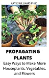 PROPAGATING PLANTS : Easy Ways to Make More