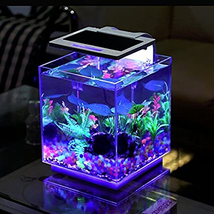 5eb8c091412 Amazon.com  Aqua Innovations Aquarium Kit (Include Filter + LED Light) (15L  - Cube)  Pet Supplies