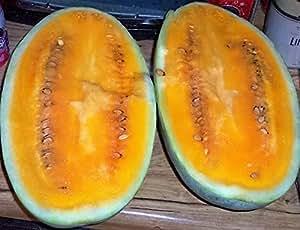 50 TENDERSWEET ORANGE WATERMELON Orange Flesh Citrullus Lanatus Fruit Melon Seeds *Comb S/H