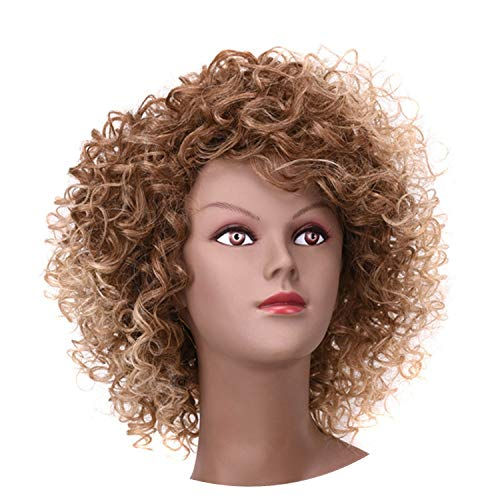 Short Synthetic Wigs Kinky Curly 1B Only Synthetic Wigs For Women Heat Resistant,T12-24J,10inches