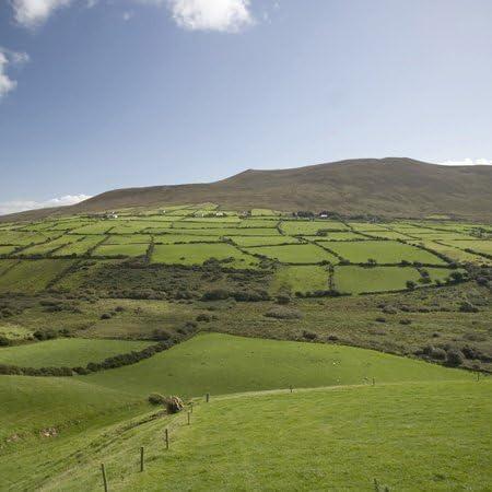3drose Lsp 82004 6 Farms Countryside Ireland Eu15 Pwa0062 Patrick J Wall 2 Plug Outlet Cover Outlet Plates Amazon Com