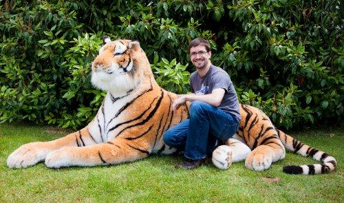 Amazon Com Lifesize 7 Plush Bengal Tiger Shrinkable Toys Games