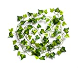 Best Artificial English 210cm / 7ft Ivy Garland Hanging Vine String Plant - IL03 (1)