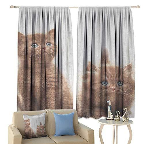 HoBeauty Animal, Room Darkening Wide Curtains, Cute Kittens Baby Cats Sweet Feline Kids Nursery Child Kitty Theme Artwork Print, Decor Curtains by,