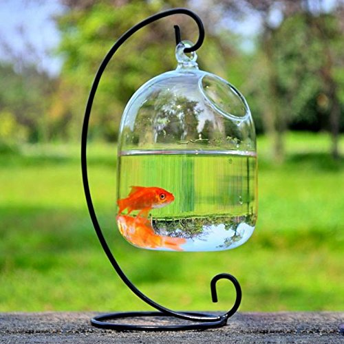 Small Glass Vase Creative Fish Tank Aquarium Fish Bowl Decoration For Hotel (Include The Stand+Bowl) (black, small) by smart sisi