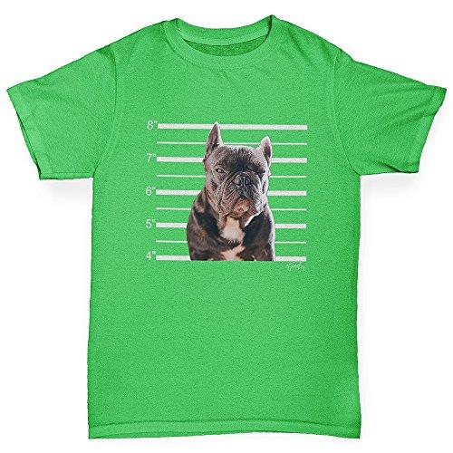 TWISTED ENVY Girls Novelty t Shirts Staffordshire Bull Terrier Mugshot Age 5-6 Green