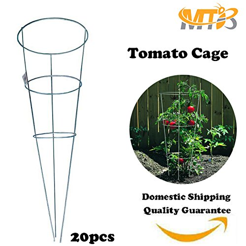 MTB Galvanized Tomato and Plant Support Cage 33 inch, Pack of (Cheap Tomato Cages)