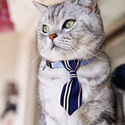 BESTOYARD - Corbata Ajustable para Perro, Gato, Cachorro, con ...