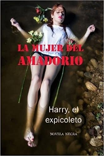 La mujer del Amadorio (Spanish Edition): Ramon Fernandez Palmeral: 9780244614171: Amazon.com: Books