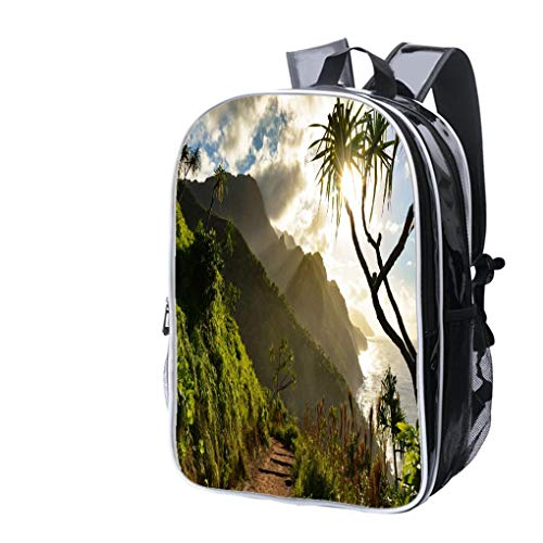 (High-end Custom Laptop Backpack-Leisure Travel Backpack Beautiful Na Pali Coast Sunset from The Kalalau Trail on Kauais North Water Resistant-Anti Theft - Durable -Ultralight- Classic-School-Black)