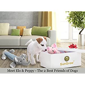 2 Plush Squeaky Puppy Toys --- Dynamic Due of Peppy the Pig and Elo the Elephant for your small dog - Chewable and soft - Helps Maintain Healthy Teeth and Gums - Satisfies their Chewing Instinct