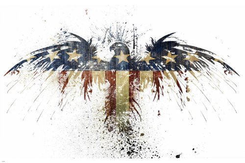 STARS & STRIPES American Eagle POSTER 24X36 UNIQUE PATRIOTIC Painted - American Patriotic Posters