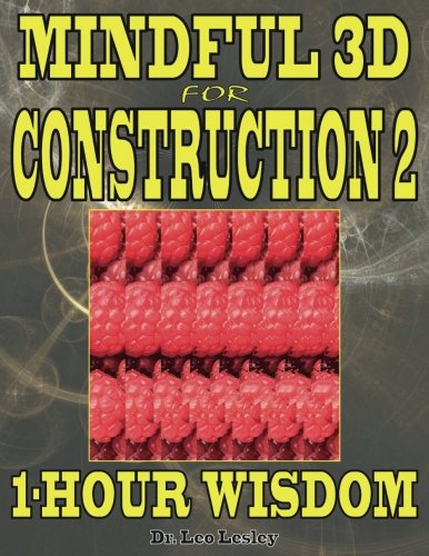 Mindful 3D for Construction 2: 1-Hour Wisdom Volume 2