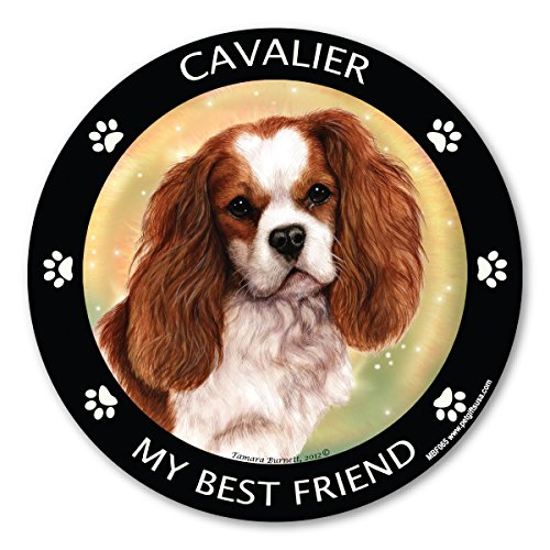 Cavalier King Charles SpanielMy Best Friend Magnet