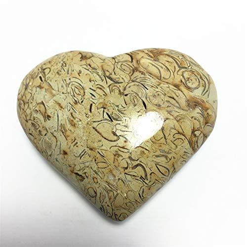 Enshang Natural Dinosaur Bone Fossil Stone Heart Carving Polished Raw Gemstone Meditation Crystal Healing Crystal Energy Mineral