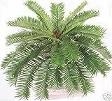 (Ship from USA) SAGO PALM BUSH 27'' ARTIFICIAL PLANT SILK HOME DECOR TREE FERN ARRANGEMENT DEN *JPOU842H5ET18952
