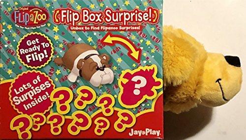 Top 10 recommendation flipazoo flip box surprise 2019