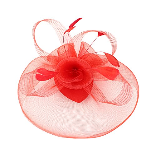 Flowers And Veil (Urban CoCo Women's Elegant Flower Feather and Veil Fascinator Cocktail Party Hair Clip Hat)