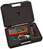 Extech MG302 Wireless 13 Function True RMS Multi Meter/Insulation Tester