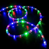 WYZworks 100' feet Multi-RGB LED Rope Lights - Flexible 2 Wire Accent Holiday Christmas Party Decoration Lighting | UL Certified