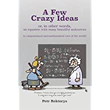 A Few Crazy Ideas: or, in other words, an equation with many beautiful unknowns (a computational and mathematical view of the world)