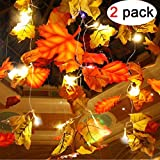 2 Pack Maple Leaves Garland String Lights 20 LED Lights 9.8ft Waterproof Fall Decoration Seasonal Lights for Party Halloween Thanksgiving Christmas Indoor Outdoor Birthday Gift 3AA Battery Operated