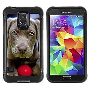 Suave TPU Caso Carcasa de Caucho Funda para Samsung Galaxy S5 SM-G900 / Chesapeake Bay Retriever Weimaraner / STRONG