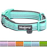 Blueberry Pet 6 Colors Soft & Comfy 3M Reflective Pastel Color Padded Dog Collar - Mint Blue - Medium - Neck 14.5