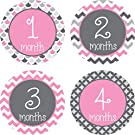 Little LillyBug Designs - Monthly Baby Stickers - Pink and Grey Sampler