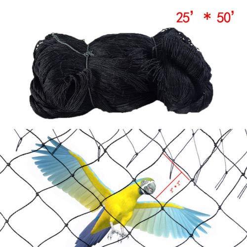 FidgetFidget Garden Anti Bird Netting Fruit Vegetables Predection Net 2 x2  Black Mesh BCL 8  15M (25'50')