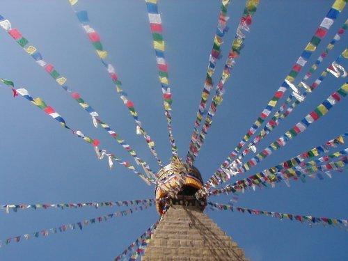 One World is Enough Drapeau de prière sur longue chaîne - 25 drapeaux - longueur totale de la chaîne d'environ 680cm, chaque mesure de drapeau 16cm par 25 cm - commerce équitable