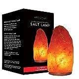 Evolution Salt - Natural Crystal Himalayan Salt Lamp 8-10 lbs