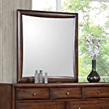 Coaster Home Furnishings 200644 Casual Contemporary Mirror, Walnut