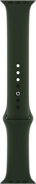 Apple Watch Sport Band (40mm) - Cyprus Green - Regular
