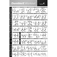 "DUMBBELL EXERCISE POSTER LAMINATED - Workout Strength Training Chart - Build Muscle, Tone & Tighten - Home Gym Weight Lifting Routine - Body Building Guide w/ Free Weights & Resistance - 20""x30"" from NewMe Fitness"