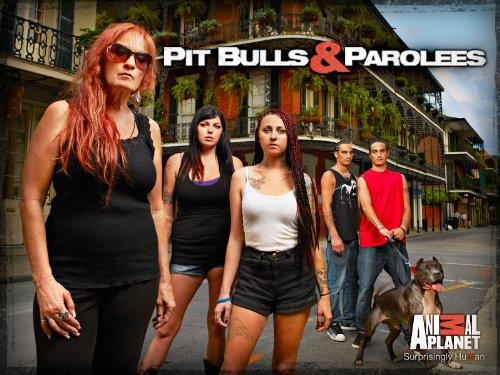 amazon com  pit bulls and parolees season 4  amazon