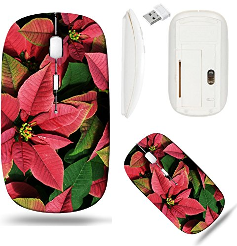 Liili Wireless Mouse White Base Travel 2.4G Wireless Mice with USB Receiver, Click with 1000 DPI for notebook, pc, laptop, computer, mac book IMAGE ID: 3500690 Background of Red and Green Poinsettias -