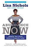img - for Abundance Now: Amplify Your Life & Achieve Prosperity Today book / textbook / text book
