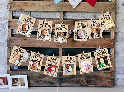 JeVenis Wild One Baby Photo Banner Wild One 12 Month Banner First Birthday Decorations 12 Month Photo Banner First Birthday Garland First Birthday Monthly Photo Banner ()