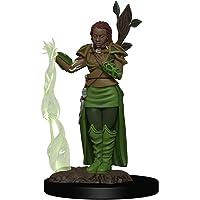 D&D: Icons of the Realms - Premium Figures - Human Female Druid, Galápagos Jogos, White