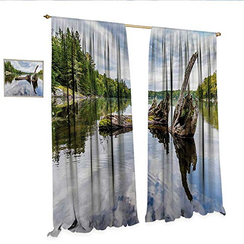 Driftwood Decor Curtains by Remains of a White Cedar Tree Trunk in The Lake and The Sky Digital Image Patterned Drape for Glass Door W108 x L96 Green Pale -