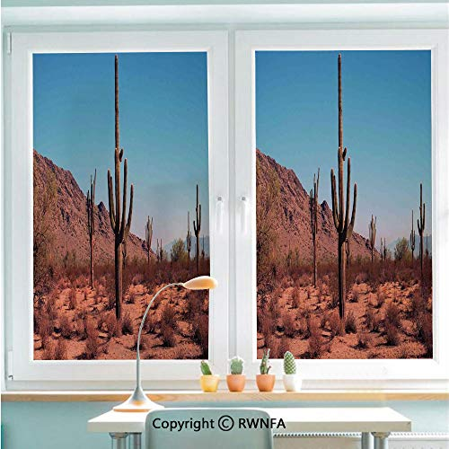 RWNFA Window Films Privacy Glass Sticker Grown Prominent Cacti with The Spines Hardy Plants Clear Sky Landscape Picture Static Decorative Heat Control Anti UV 22.8In by 35.4In,Brown Blue